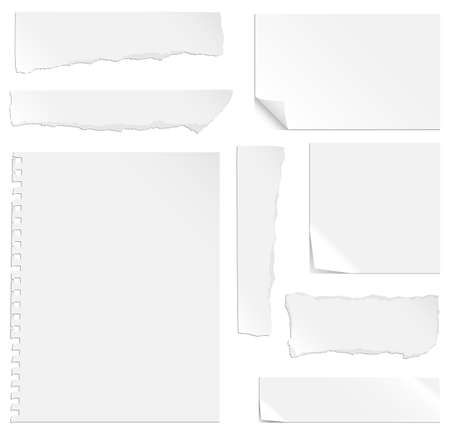 Blank Paper with Bends and Tears