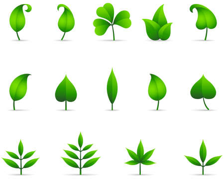 be green: Leaf Icons - Set of fresh green leaf icons with shadows.  File is layered, and each leaf is grouped separately for easy editing.  Colors are just a few global swatches, so they can be modified easily. Illustration