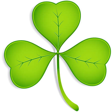 threeleaf: Shamrock - Realistic vector three-leaf clover with shadow.  Elements are grouped separately, and file is layered for easy editing.  Colored with global swatches, so file can be recolored easily. Illustration