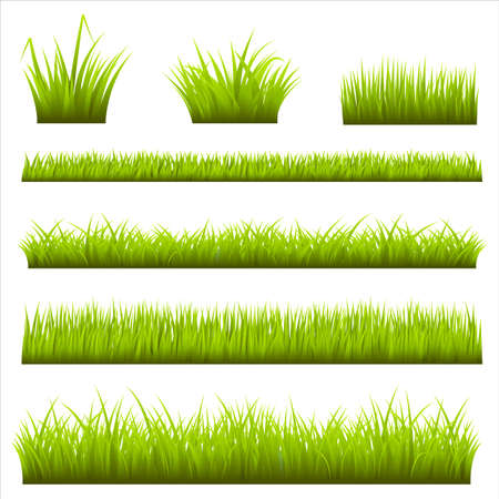 Grass Backgrounds 免版税图像 - 37404475