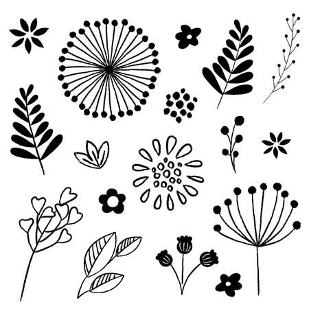 hand drawn flower: Floral and Leaf Elements Set - Set of hand-drawn floral design elements in black on a white background