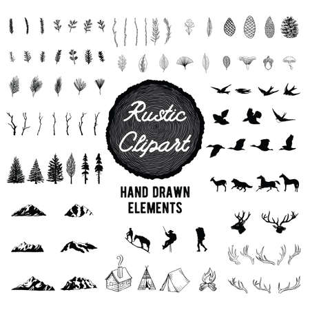 Rustic Nature Clipart - Vector hand drawn illustrations of the outdoors, plants and animals. Stock Illustratie