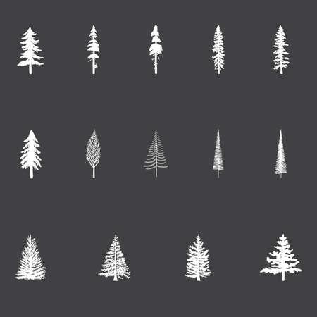 クリスマス ツリー - は、黒板スタイルのベクトル クリスマス ツリーのセットです。松の木、ダグラスもみ。