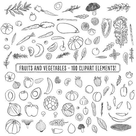 Fruits and Vegetables -  Set of 100 hand drawn clipart fruits and vegetables Vettoriali