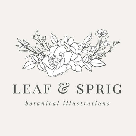 Floral Botanical Logo Illustration - Botanical logo design with hand drawn illustrations. The elements can be separated and rearranged or used individually.