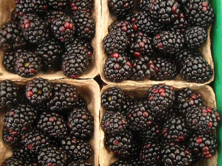four baskets of blackberries