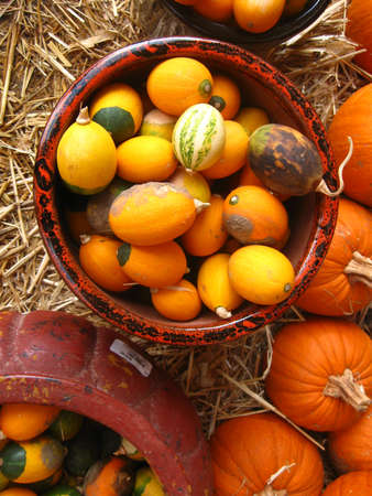 bowls with colorful gourds