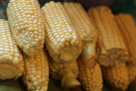 a pile of ears of fresh corn