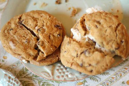 home made cookie ice cream sandwich Banco de Imagens