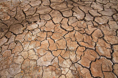 Cracked earth, possible effect of Global Warming photo