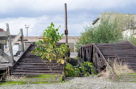 Old abandoned factory area with green tree in the foreground.