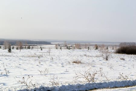 Field and bushes covered with snow.