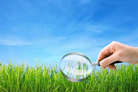 虫眼鏡の下の草のクローズ アップ 写真素材