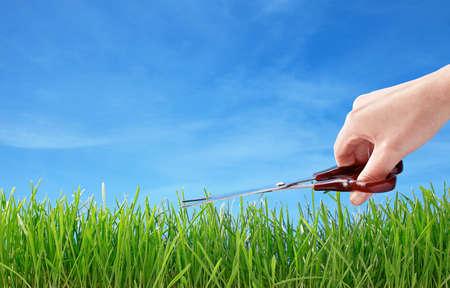 cutting grass with scissors symbol