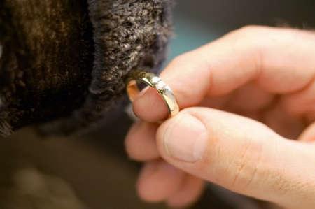 Handpolieren ist ein Ehering Standard-Bild - 42378405