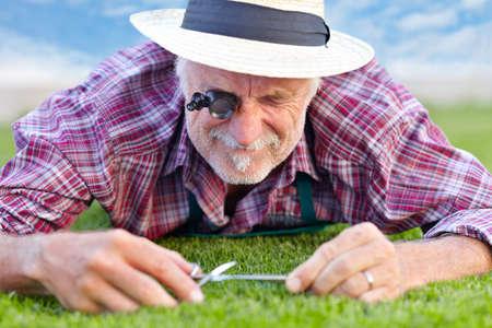 上級ガーデナーの草のクローズ アップ