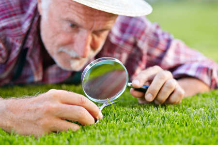 close up: Close up of senior gardener cutting grass