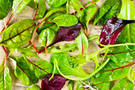 Fresh salad leaves and greens for background