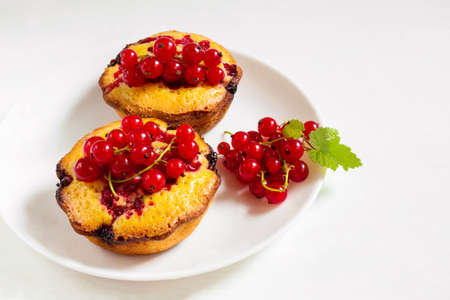 red currant: Delicious cakes with red currant on a plate Stock Photo