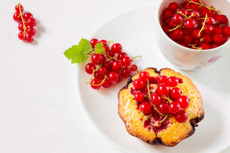 red currant: Delicious cake with red currant on a plate