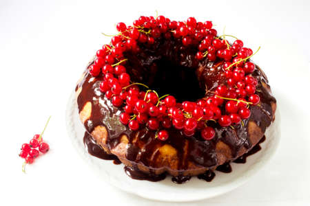 chocolate cakes: Sponge cake garnished with hot chocolate and redcurrants on a white background