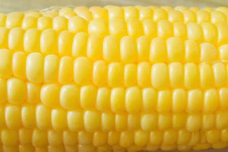 maiz: Corn cobs closeup for background