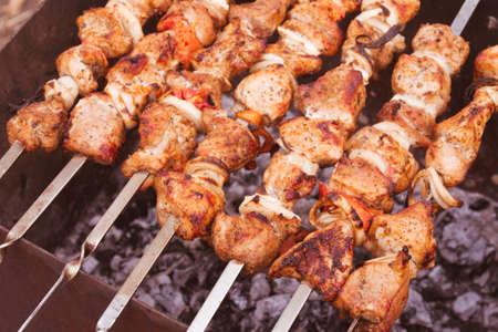 the shish kebab: Delicious shish kebab barbecue cooked on skewers over the coals.