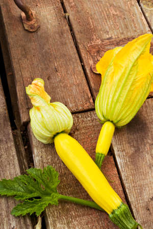 vegetable marrow: Young squash vegetable marrow on a wooden background for cooking healthy meals