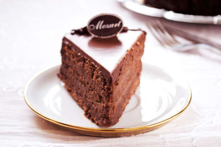savour: Delicious chocolate cake on plate