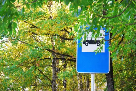 European Bus stop sign (with free space for text) surrounded by autumn leaves