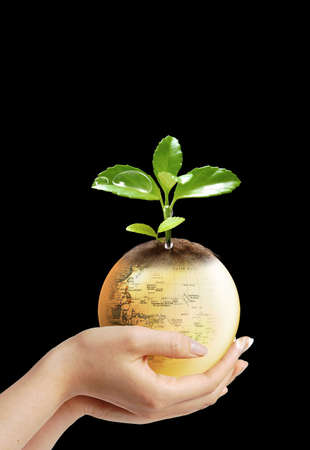 Here you can see nice earth in womans hands  photo
