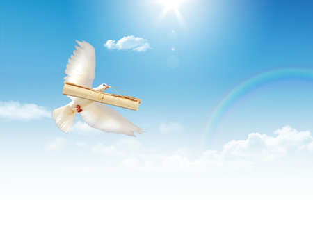 A free flying white dove with a letter isolated on a blue sky background. Stock Photo