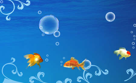Nice underwater life with nice three fishes photo