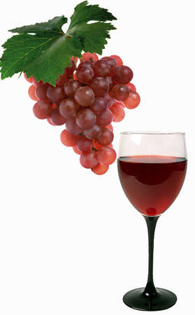 Picture with red grape and vine Stock Photo