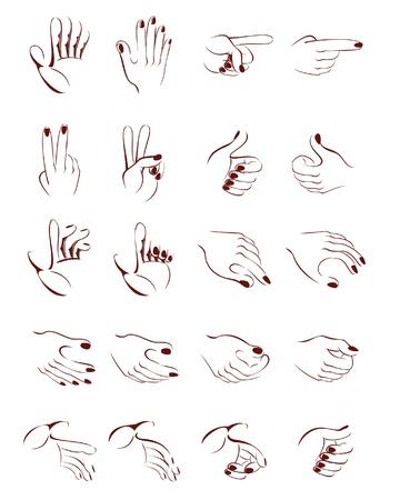 hand position: Dibujo de posici�n diferente mano estilizado vectorial