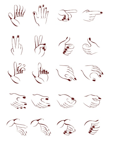Stylized vector drawing of different hand position Illustration