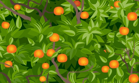 tangerine tree foliage seamless background Vector