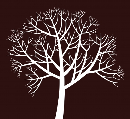 branchy: branchy tree Illustration
