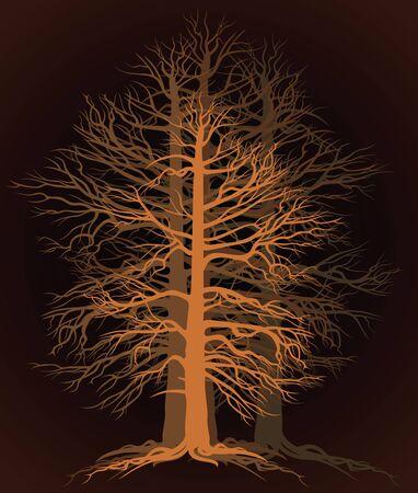 branchy tree Illustration