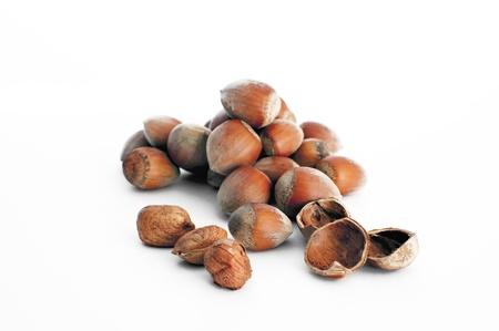 Hazelnuts isolated set of several