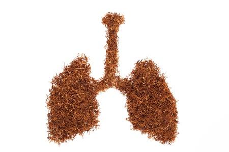 tabaco: forma pulmonar consta de tabaco tubo Foto de archivo