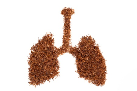 pulmonary form consists of snuff pipe
