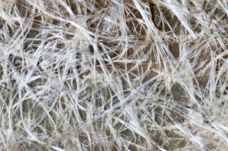 Macro detail of a piece of Carbon fiber photo