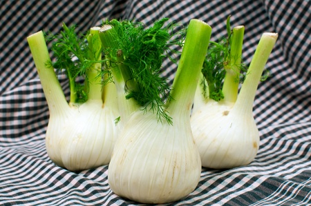 Detail of a fennel bulbs Stock Photo