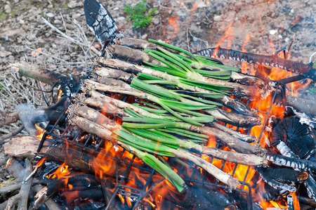 typical catalan sweet onions on the barbecue