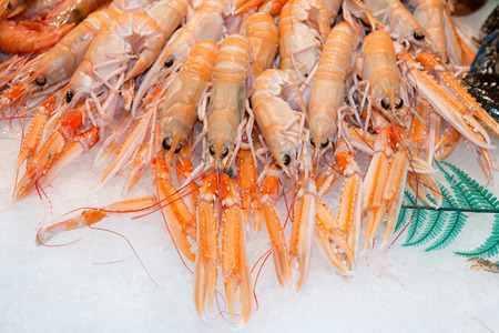 langoustine: Nephrops norvegicus for sale in a fish Stock Photo