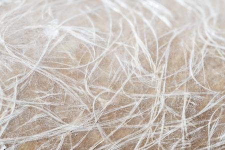 Detailed view of a piece of fiberglass