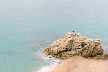 roca: Details Roca Grossa beach of Calella in Catalonia (Spain)