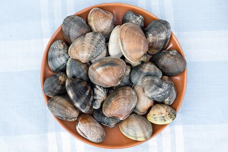 Detail of a raw clams Stock Photo
