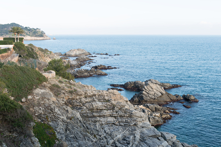selva: Landscapes and details of the Coast Brave (Costa Brava) in Girona (Spain) Stock Photo